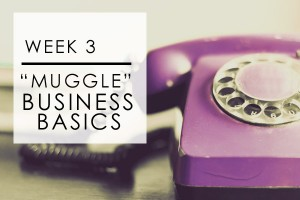 Week 3: Muggle Biz Basics
