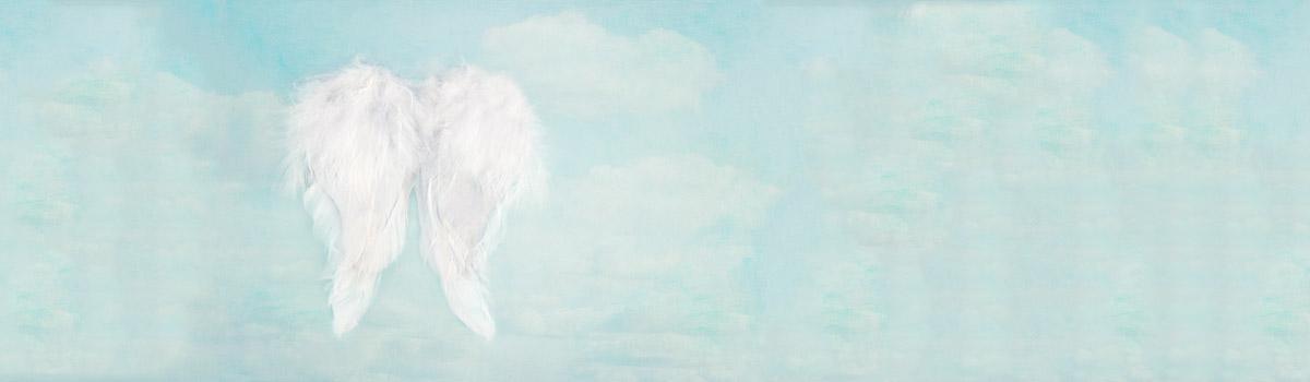 angel-wings-slider